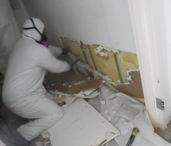 Mold Remediation- Thousand Oaks
